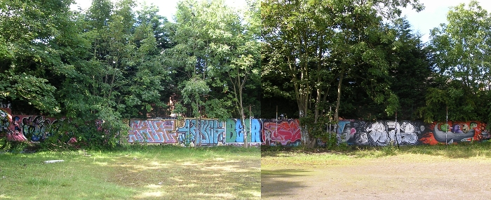 South Wall Sawdon Road Aug.2012