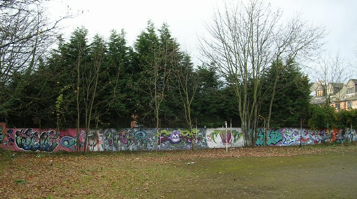 South Wall Sawdon Road Nov.12